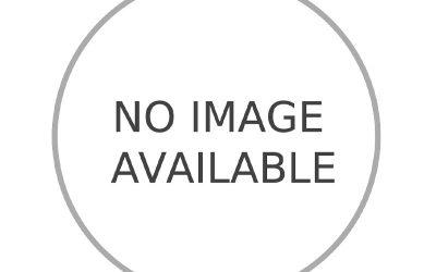 Hydrangea Lets Dance® Rhythmic Blue PP#25,836